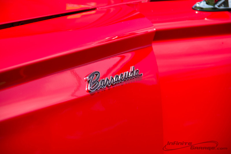 Barracuda-badge