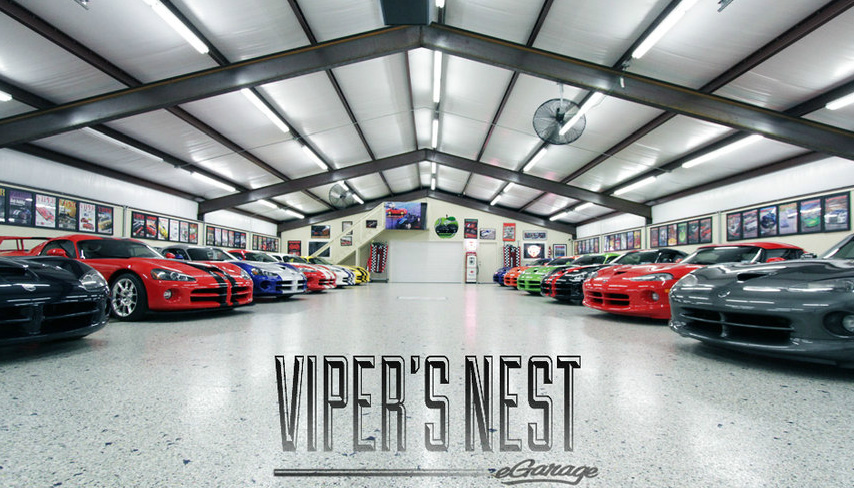 Vipers-Nest